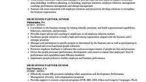 Senior Hr Business Partner Resume Sample Hr Business Partner Senior Resume Samples